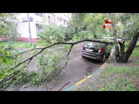 По Москве ударил сильный ливень