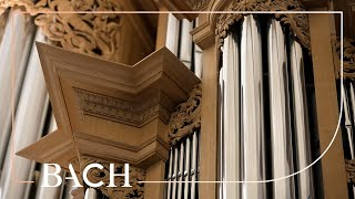 OLD VERSION Bach - Wachet auf, ruft uns die Stimme BWV 645 - Zerer | Netherlands Bach Society