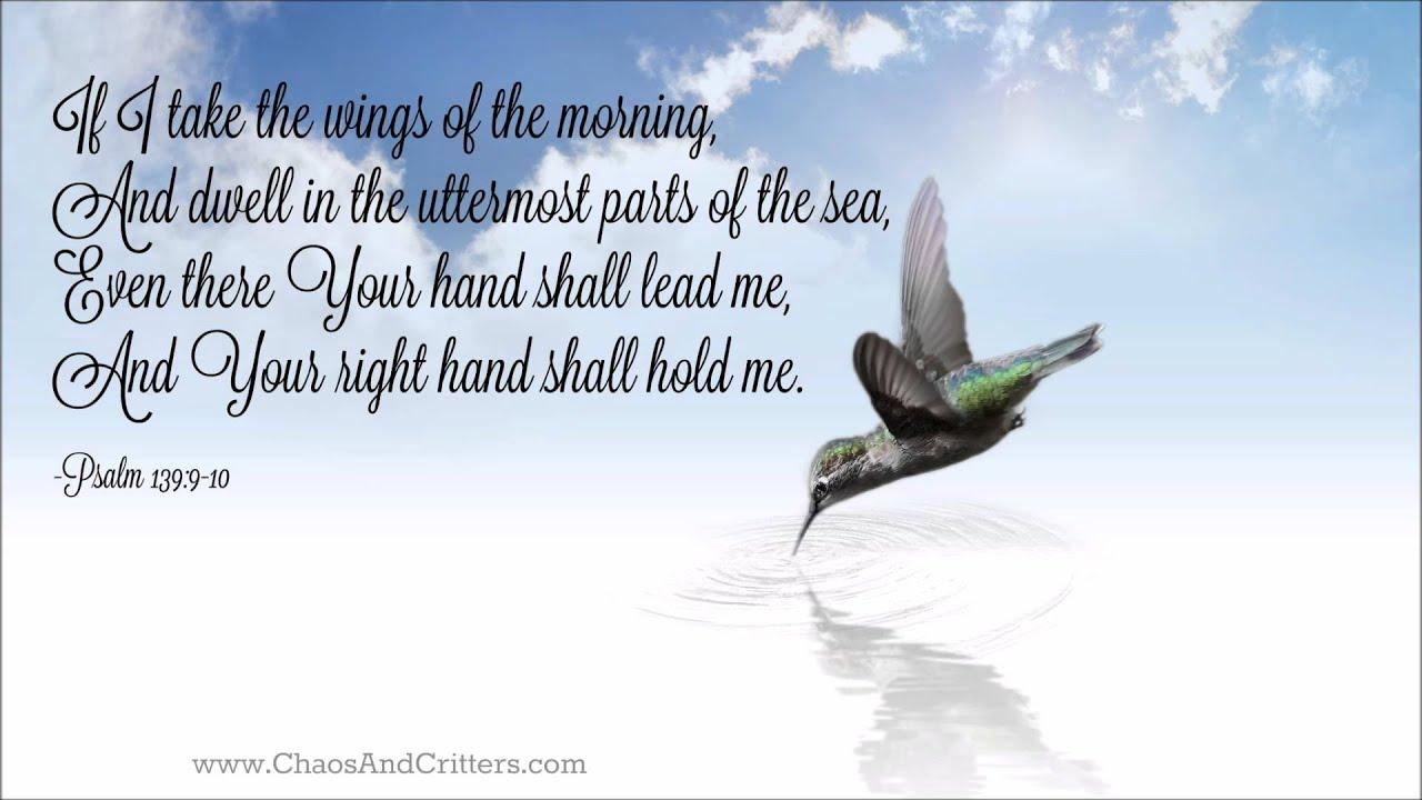 Daily bible verse com