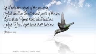 Repeat youtube video Daily Bible Verse - Psalm 139:9-10 - Daily Inspiration and Encouragement from the Bible