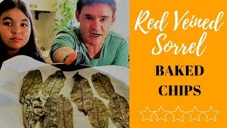 Kale Inspired Red Veined Sorrel Baked Chips Recipe