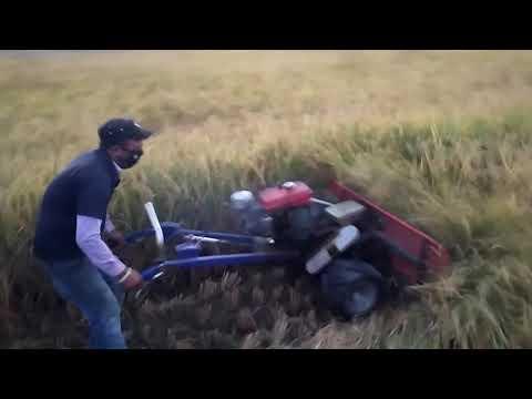 Mechanization in Rice in Superzone, Jhapa