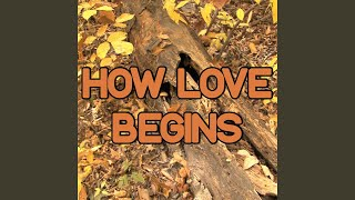 How Love Begins - Tribute to DJ Fresh & High Contrast and Dizzee Rascal (Instrumental Version)