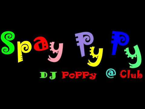 DJ.PoPPy - Remady & Manu L feat J-Son - Single Ladies