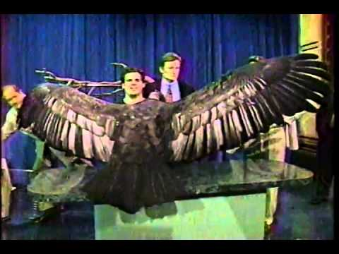 Conan O'Brien 'Jim Fowler & Amazing Wildlife Animals 19951030