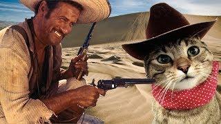 Смешной вестерн.  Разборка кота с ковбоями.