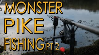 MONSTER Pike Fishing Part 2