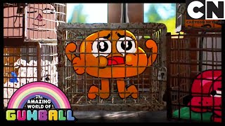 El Origen   El Increíble Mundo de Gumball en Español Latino   Cartoon Network