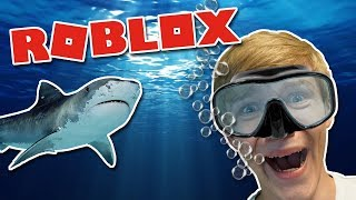 ATTACKED BY SHARKS! (English Roblox: Shark Bite)