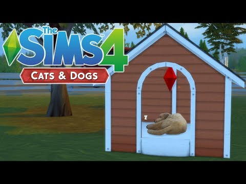 PETS CC SHOPPING - The Sims 4 Cats and Dogs