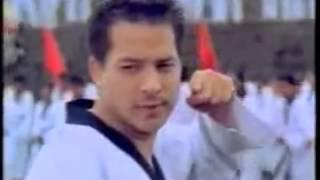 Iklan Fatigon - Ari Wibowo (Karate) (2000-2001) @ INDOSIAR