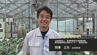 暑さに強い花によるおもてなし-東京2020大会に向けて-