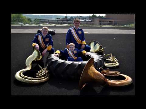 Wilmington Area High School Band 2016-2017