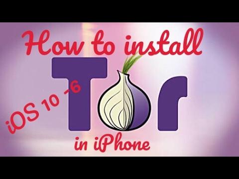установить tor browser на iphone гирда