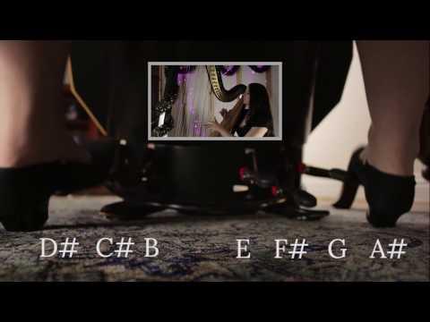 [Foot Cam Special] - Tchaikovsky - Dance of the Sugar Plum Fairy // Amy Turk, Harp
