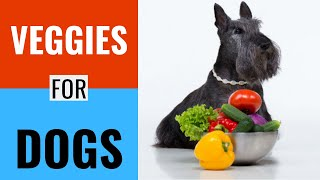 What vegetables are good for dogs