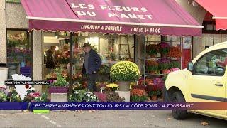 Yvelines | Les chrysanthèmes ont toujours la côte pour la Toussaint