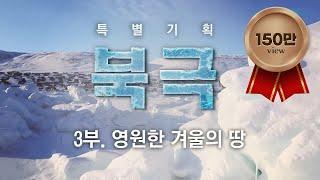 [특별기획, 북극] 3부. 영원한 겨울의 땅 / YTN 사이언스