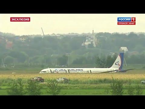 Самолет Москва - Симферополь приземлился на кукурузном поле