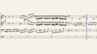 Mozart W. A. - chamber music 304