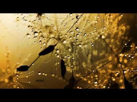 Aashada Rathiyil Lyrics - Aksharathettu Malayalam Movie Songs Lyrics