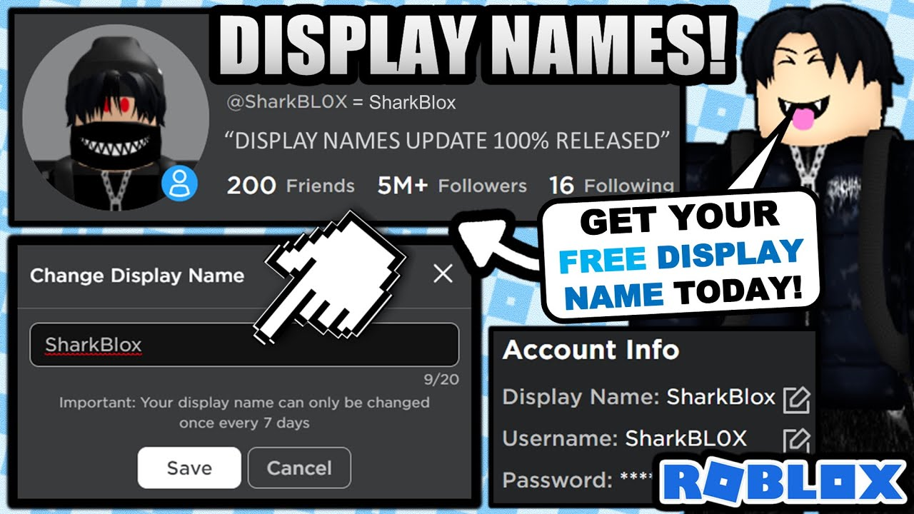 THE DISPLAY NAME UPDATE IS HERE! 100% RELEASED! GET YOUR DISPLAY NAME NOW! (ROBLOX)