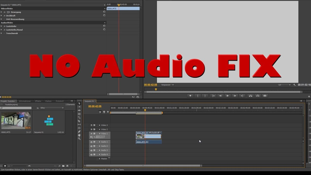 AVCHD no Audio Premiere CS6 - fast & easy Way (German)