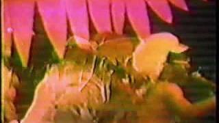 Flash Light (Part 1)- D.C. 1979