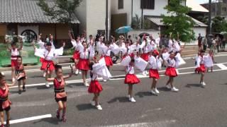 2014年7月21日(月)に香川県観音寺市で開催された「銭形よさこい2014」、...
