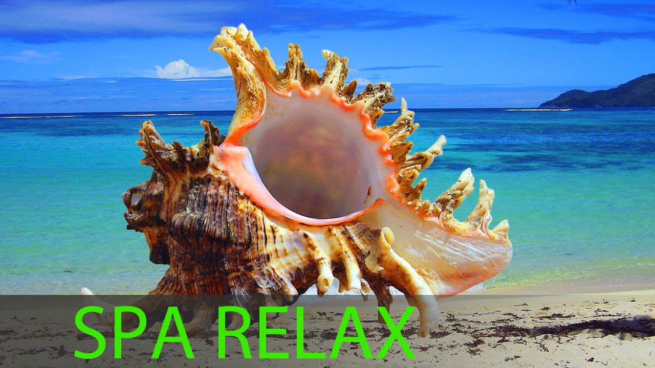 6 Hour Best Relaxing Spa Music Background Music Soothing