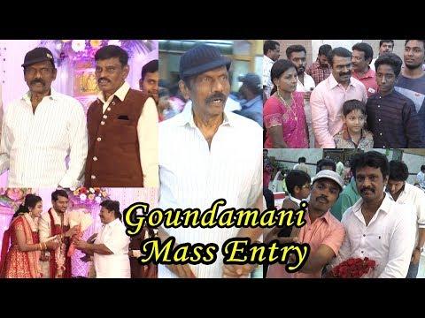 Goundamani,RajKiran,Seeman,RadhaRavi,ThambiRamaiah and More Celebrities@Actor E.Ramadass Son Wedding