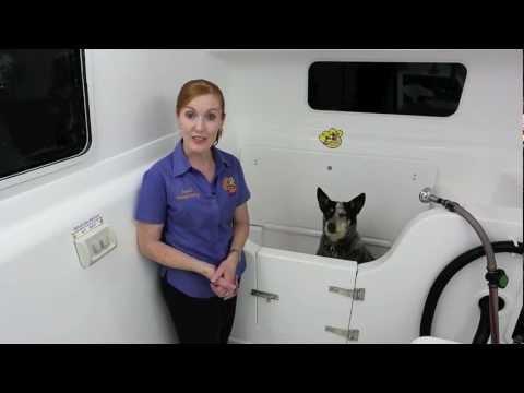 Savel Mobile Pet Salon - Mobile Dog Grooming Trailer