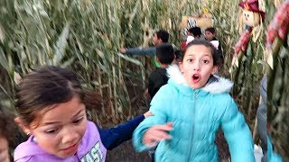 Corn Maze Haunted House 😳