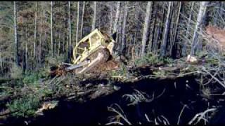d7g dozer on stump