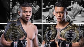 Martin Nguyen vs Bibiano Fernandes || Records - Net Worth - Cars - Bio - Salary - Lifestyle - 2018