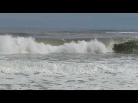 Robert Moses waves