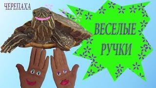 Веселые ручки  Черепаха Развивающие мультики для детей