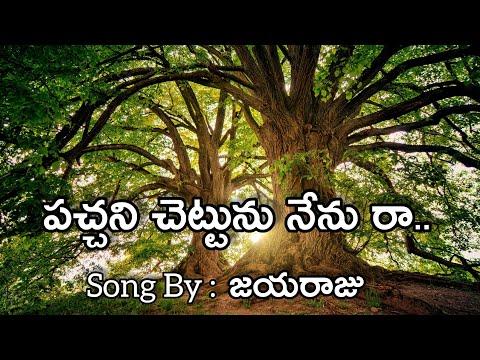 పచ్చాని చెట్టు నేనురా|pachani Chettu Nenu Raa| Song Jayaraju Lyrical Video