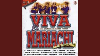 La marcha de zacatecas (Instrumental)