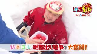 【さくらんぼテレビ】昼ドキ!TV やまがたチョイす 3月3日 (土)OA予告 thumbnail
