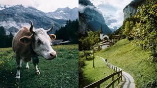 A Virtual Visit To SWITZERLAND