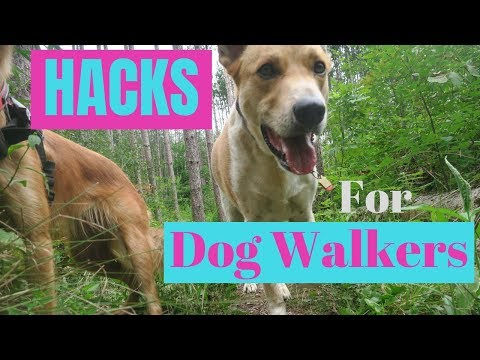 7 MAJOR Hacks for DOG WALKERS