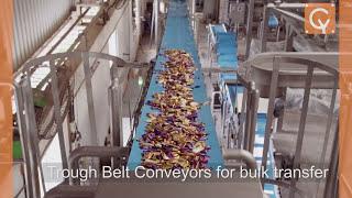 candy conveyance and distribution systems cybernetik technologies pvt ltd