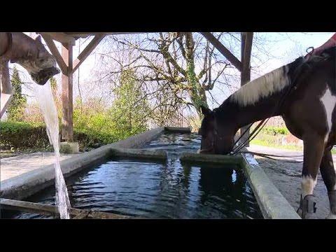 La Place Du Village : Rencontres à Clarafond à Drumettaz-Clarafond