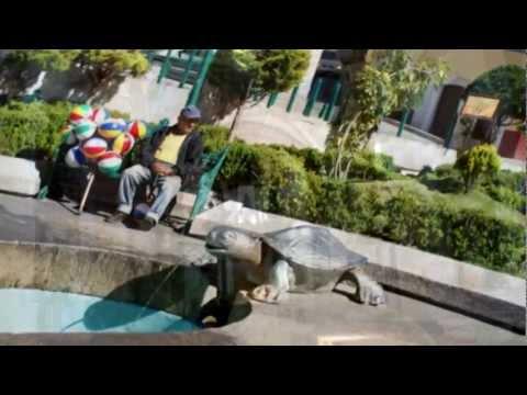 Real del Monte - Mineral del Monte Pueblo Mágico de Hidalgo