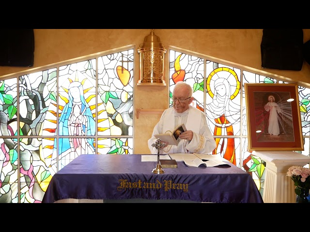 Day 2 - Fr. Michael Barry - Mercy Novena - Divine Mercy Chaplet