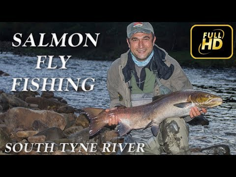 Salmon Fly Fishing on South Tyne River