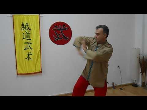 Dou Chuan Pai Close Fighting by Master Bill Drougas