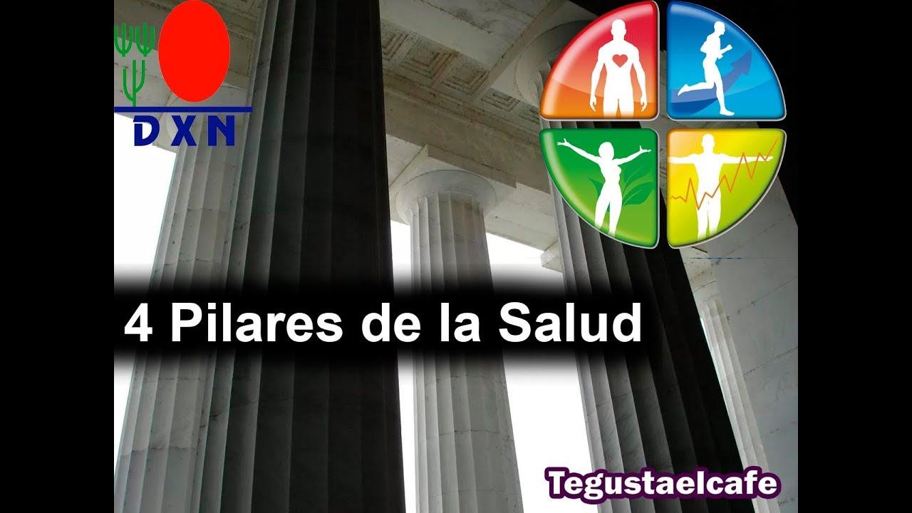 Las Cuatro Columnas De La Salud Con Dxn By Tegustaelcafe