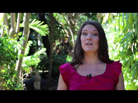 Are Brazil Nuts Healthy? - 2 Minutes to Health